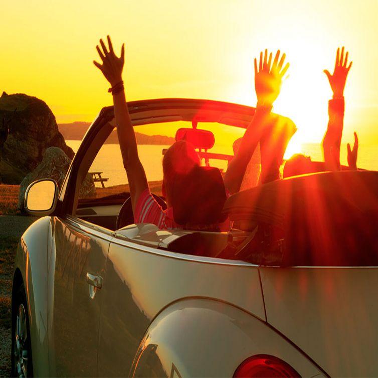 Automobile Rentals